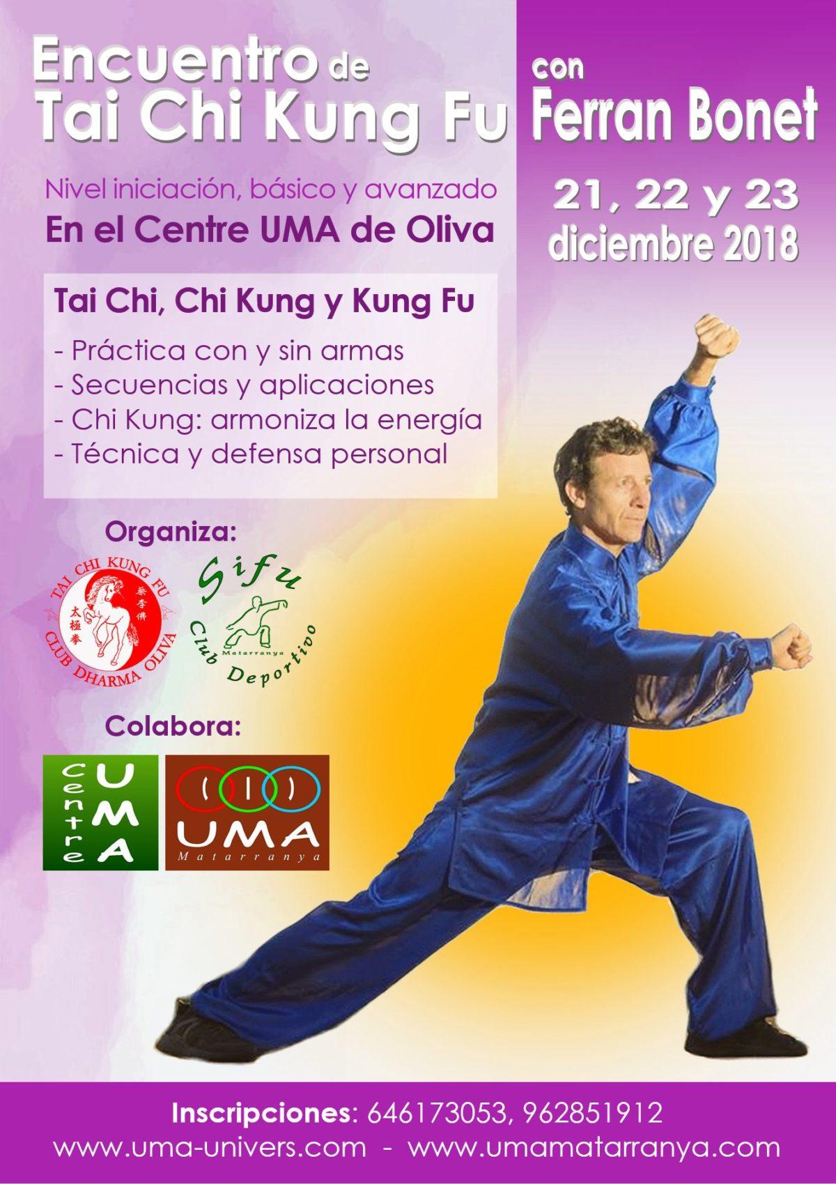 Encuentro de Tai Chi Kung Fu en Oliva