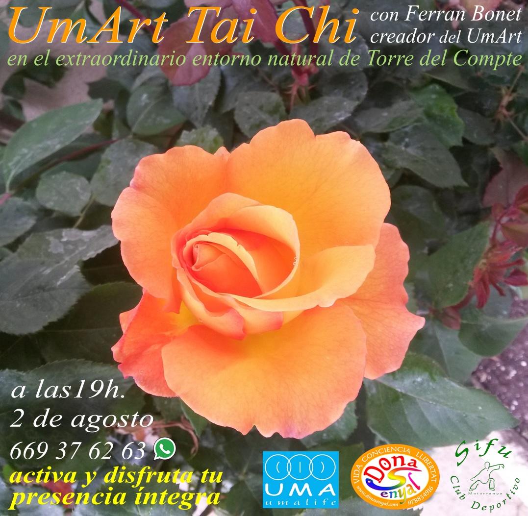 Taller UmArt Tai Chi